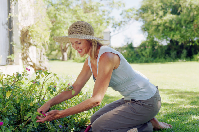 Youngsters' Winter Gardening Enjoyable